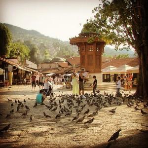 Sebij, la place aux pigeons de Sarajevo, en Bosnie